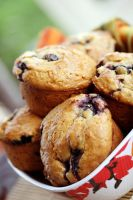 BCL Muffins 9 by laurenjacob
