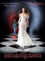 Breaking  Dawn cover meaning by cylonka