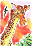 Oil Pastels: Giraffe by kxeron