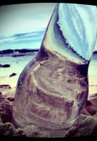 Bottle.pt1 by petertaby