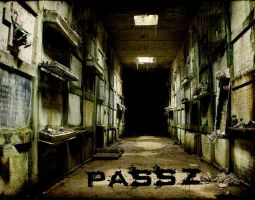 Passz - ALBUM COVER 4 by caizzzdigital