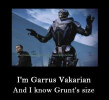 Garrus knows Grunt's size by kamagawa