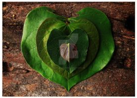 Eco Heart Dos by Iguanadongreen