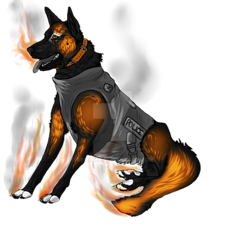 Remmiee's on Fire! by Remmiee