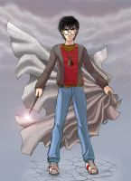 Harry Potter Z by duendefranco