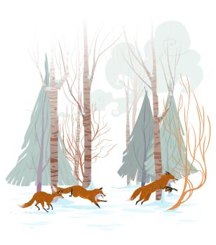 Fox Run by Nafah