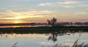 Sunrise in Camargue by Mavricot