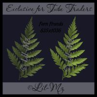 Fern Fronds Exclusive Stock by Lil-Mz
