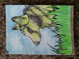 .::Aceo AT with Prinznero::. by Snowstorm-wolf