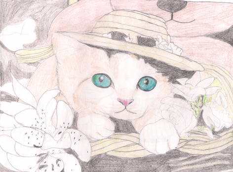 The cat with the hat by SunsetMajka626