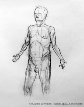 Anatomical position study- M by DrummerGirl375