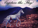 Capture the flag by aquaslullaby