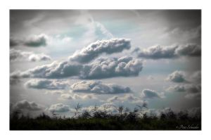 Clouds over reed. by Phototubby