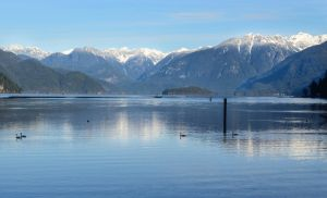 Pitt Lake in Winter by dashakern
