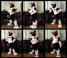 Glint Fursuit - Lights On (with video) by CuriousCreatures