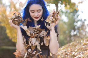 Fall Leaves 3 by MordsithCara