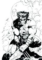 Wolverine XForce Cover Concept by DaveLungArt