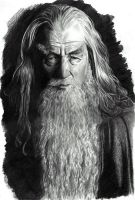 Gandalf the Grey by leiaskywalker83