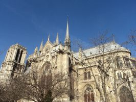 Notre Dame by chemicall-dream