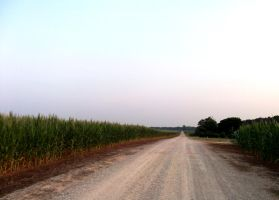 alabama gravel road by Ranald101