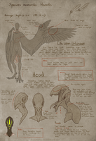 Haroth Species ref [p.1] by Aivomata
