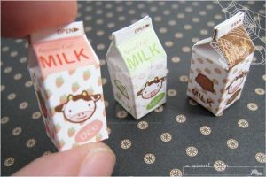Kawaii Miniature Milk Cartons by asuka-sakumo