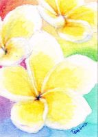 ACEO - Watercolor Flowers 006 by strryeyedreamr27