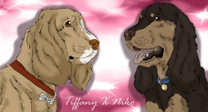 Tiffany X Niko - Litter announcement by ForeignFrontierRanch