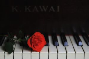 Romance and Music by lichtschrijver