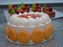 Blood Orange Cake by LoveandConfections