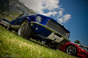 GT500 Clone by AmericanMuscle