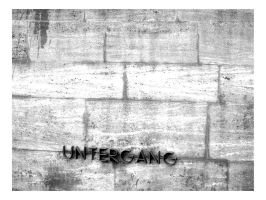 Der Untergang by atyclb