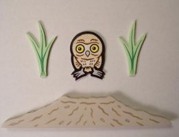 burrow owl project by matt136