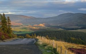 Cairngorms by efleck