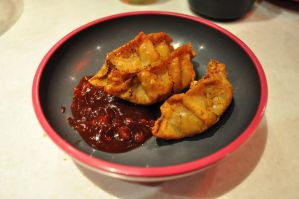 Duck Gyoza by AkraruPhotography