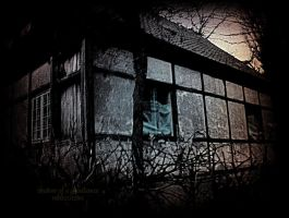 Shadow of a Ghost by MagicBlanche