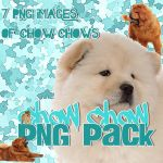 Chow Chow PNG Pack by Jecca-edits