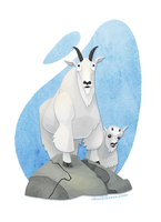 Mountain Goats by WonderDookie