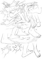 25 Hands and Feet - Day 1 by schattenlos