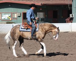 Loping by kittykitty5150