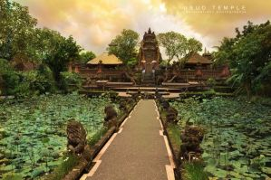 ubud temple by melvinationz