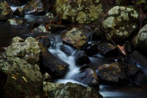 Tranquil Stream by Mitchography