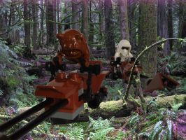 Speeder-Bike Chase - Wicket by Anonyme003