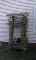 recycled wood trellis by Lioness123