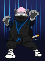 Ninja Cat by whiteguardian