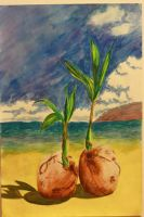 Watercolor: Coconuts by spilledpaint88