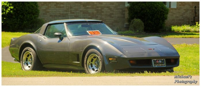 Cool Corvette by TheMan268