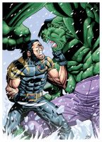 Ultimate Wolverine Vs Hulk by pipin