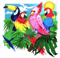 Tropical Birds by MartySalsman