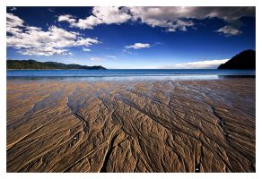 Abel Tasman Ebb and Flow by facehead